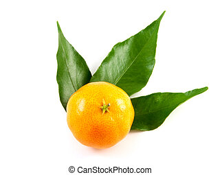 Mandarin with leafs isolated on white background
