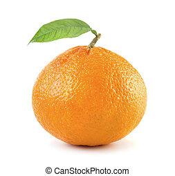 mandarina, hoja, maduro