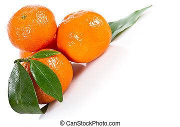 mandarine, 과일