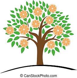 mandarine, arbre, leaves., vert, orange, ou