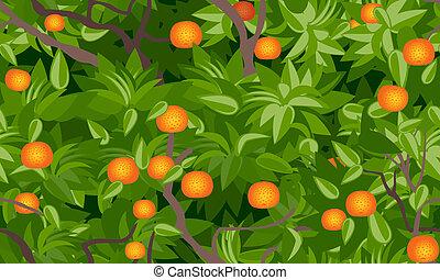 mandarine, arbre, seamless, feuillage, fond