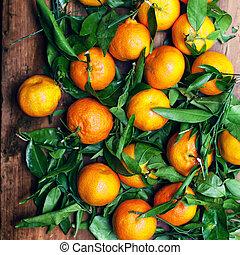 Mandarine. Clementine. Tangerine