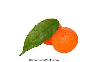 mandarine, freigestellt, aus, der, weißes, mit, ausschnitt weg