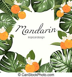 Greenery bouquet wreath template, monstera Philodendron leaves with mandarin fruit and flowers in oval shape on white background. Natural cosmetics, health care products.