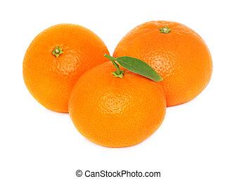 mandarins, fundo branco, três, maduro