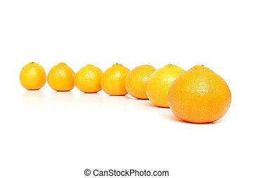 Mandarins isolated on white