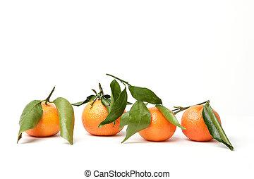 Mandarins - four mandarins in a row
