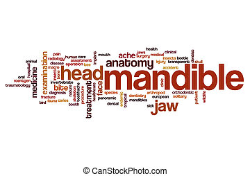 Mandible word cloud concept