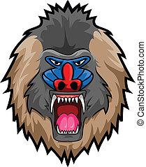 Mandril Monkey