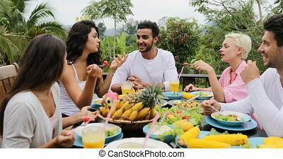 manger, séance, sain, communication, végétarien, gens, nourriture, groupe, exotique, pov, terrasse, table, amis, parler