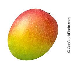 Mango - A photo of a single mango isolated on a white ...
