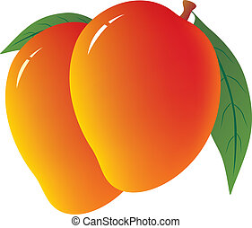 mango, achtergrond, witte