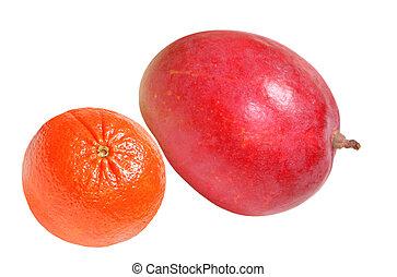 Mango and tangerine fruits isolated on white