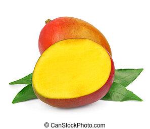 Mango fetus fruit on a white background. Tropic fruits
