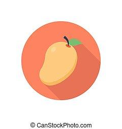 mango  flat color icon