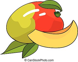 Mango fruit vector illustration