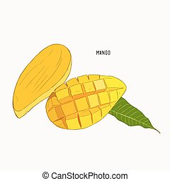 mango Hand drawn. Vintage style