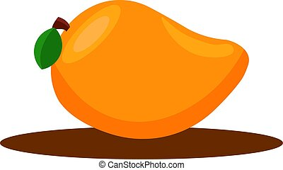 Mango, illustration, vector on white background.