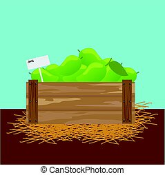 mango in a wooden crate
