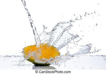 mango, in, vatten, plaska, isolerat, vita, bakgrund