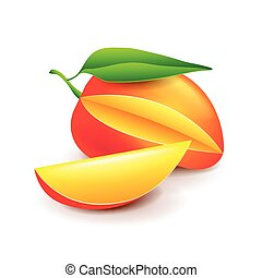 Mango isolated on white vector