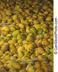 Mango-processing factory