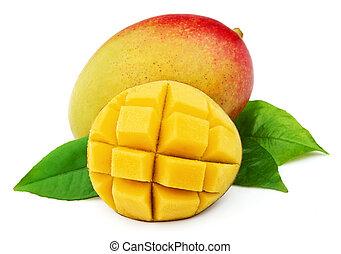 Mango fetus on a white background