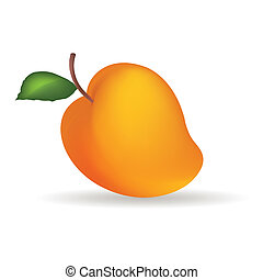 Mango - Abstract fruit with shadow effect on white...