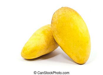 mango, vrijstaand, gele