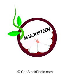 Mangosteen Fruit icons flat style, Vector Illustration.