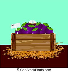 mangosteen in a wooden crate