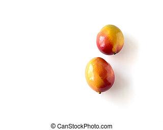 mangowce, dwa, odizolowany