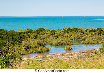 Mangroves at nearly high tide Broome