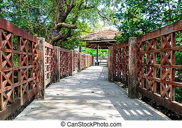 Mangroves bridge