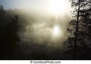manhã, névoa