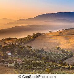 manhã, nevoeiro, sobre, tuscany, paisagem, itália