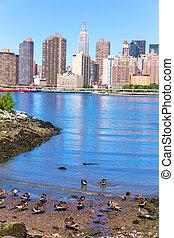 manhattan, új york égvonal, kelet folyó, noha, tenisznadrág
