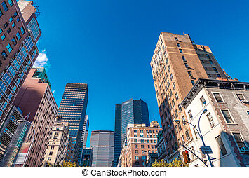 Manhattan skyscrapers with city trees, New York