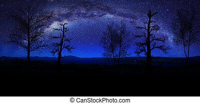 manière, coup, arbres, montagnes, silhouettes, élevé, photo, laiteux, été, horizontal, aligné, night., pris, une, premier plan.