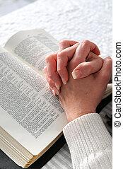 mani afferrate, in, preghiera