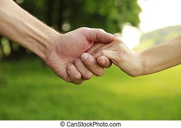 mani, amore, coppia, due, natura