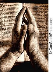 mani pregano