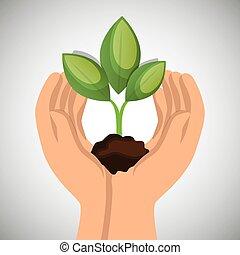 mani, presa a terra, pianta, verde, concetto, ecologico