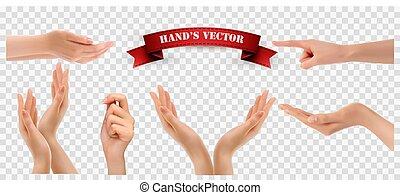 mani, trasparente, set, vettore, fondo.