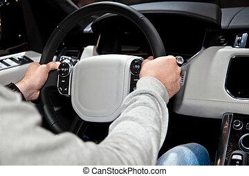 mani, volante