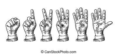 mani, zero, five., set, conteggio, gesti