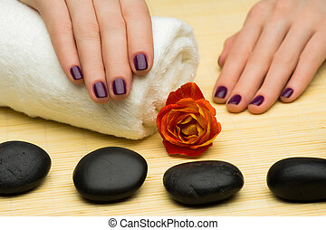 Manicure and Spa procedures