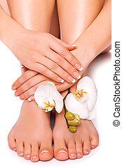 manicure, kwiat, storczyk, babski, pedicure