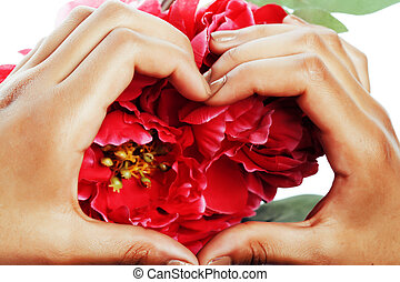 manicure pedicure people hands concept, woman fingers in shape of heart holding pink rose flowers