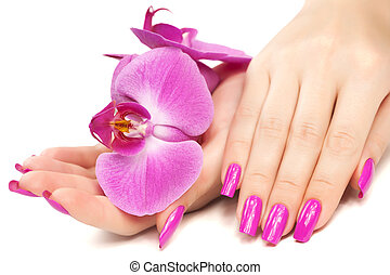 manicure with orchid flower. isolated - female hands with ...